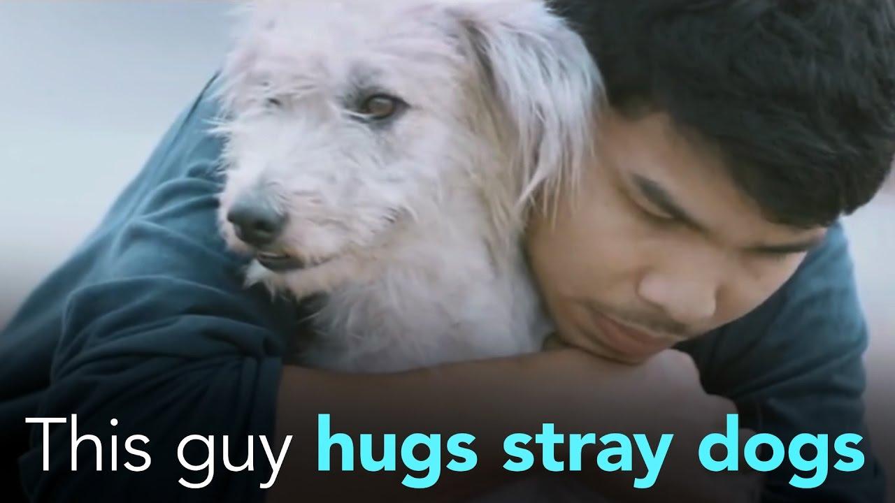 «Этот парень обнимает бездомных собак» (Источник: Youtube)