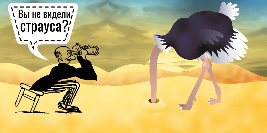 Теории заговоров: невозможно увидеть страусов, прячущих головы в песок