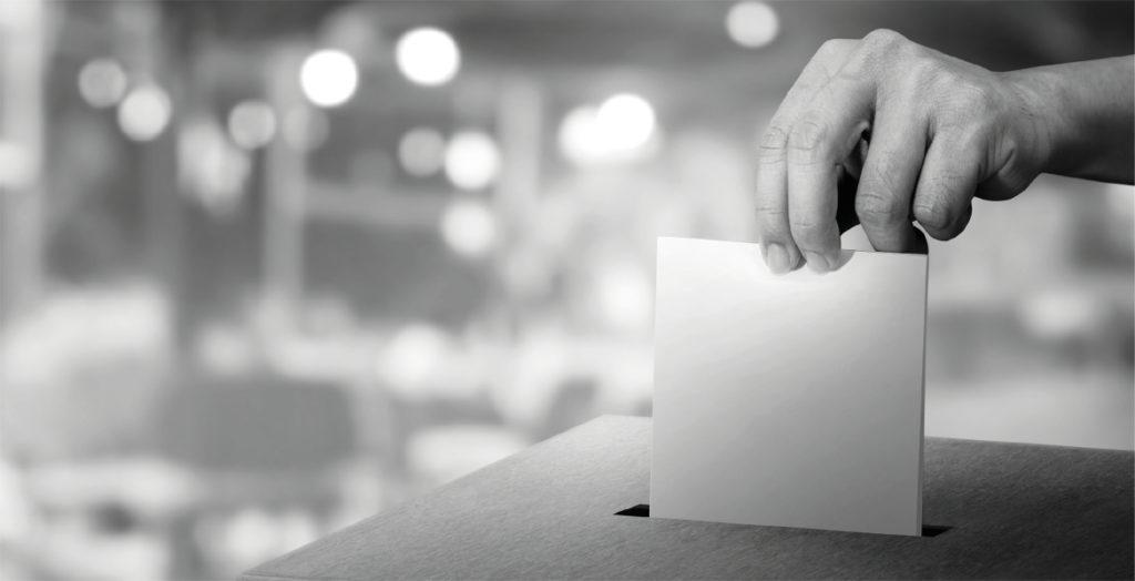 RUSSIAN ELECTION MEDDLING<br />AND PRO-KREMLIN DISINFORMATION